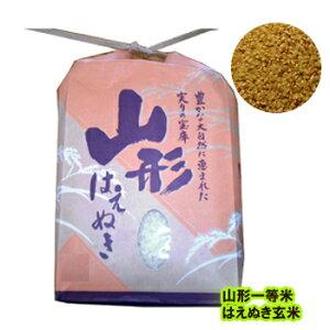 令和1年度 新米 減農薬 特別栽培米 山形産はえぬき 玄米10kg=5kg袋×2 【送料無料】;