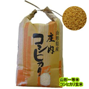 令和1年度 新米 減農薬 特別栽培米 山形産こしひかり 玄米5kg ;