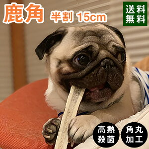 【 15cm 中型犬 縦割り 】鹿の角 半割り 犬 おもちゃ 無添加 おやつ エゾジカ 国産 鹿 角 ガム デンタルケア monolife