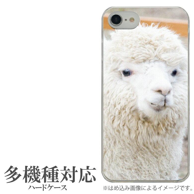 オリジナル No89 アルパカ 多機種に対応 クリアハードケース iPhone X iPhone7 Xperia XZ1 Galaxy AQUOS スマホケース フォト アニマル 写真 かわいい おしゃれ alpaca ゆるかわ 可愛い オシャレ