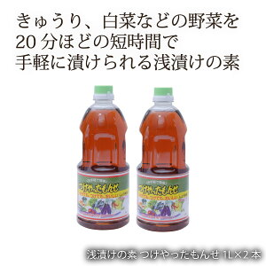 鹿児島 藤安醸醸造 ヒシク しょうゆ 醤油 あまい 甘口 [藤安醸造 ヒシク] 浅漬けの素 つけやったもんせ 1L×2本