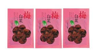広島 漬物 漬菜 広島菜 白菜 国産 [山豊] 漬物 広島菜 梅白菜 100g×3袋セット