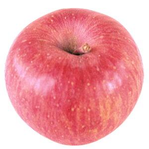 お歳暮 御歳暮 ギフト 秀品 サンふじ 特選3kg箱 9〜12個入り 長野県産 りんご 産地直送 送料無料