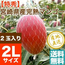 特秀 完熟 宮崎 マンゴー 贈答用2Lサイズ 2玉(700g以上) 送料無料 宮崎県産 お中元 フルーツギフト