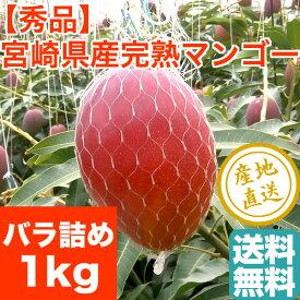 完熟 宮崎 マンゴー Mサイズ バラ詰め 1kg箱 送料無料 宮崎県産 お中元 フルーツギフト