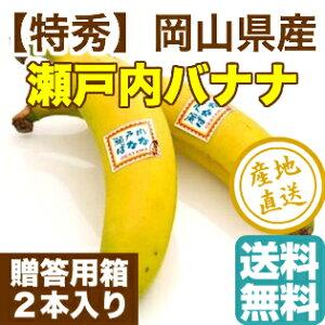 瀬戸内バナナ 岡山県産 特秀 無農薬国産バナナ 贈答用 2本入り化粧箱 送料無料 ギフト 予約販売