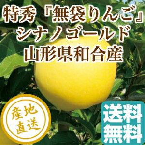特秀 りんご シナノゴールド 特選5kg箱 山形県和合産 送料無料 ギフト