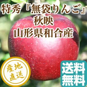 特秀 りんご 秋映 特選5kg箱 山形県和合産 送料無料 ギフト