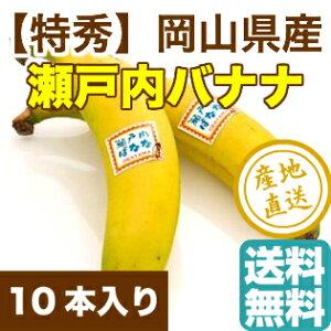 瀬戸内バナナ 岡山県産 特秀 無農薬国産バナナ 10本入り箱 送料無料 御歳暮 ギフト 予約販売