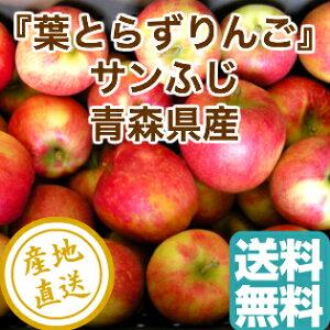 葉とらず サンふじ りんご 家庭用5kg箱 14〜23個入り 青森県産 産地直送 送料無料