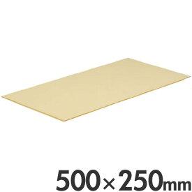 長谷川化学工業 シートまな板 抗菌 ラバーラ マット 厚み5mm 500×250mm