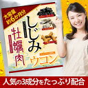 【送料無料】大容量約6か月分 しじみ牡蠣肉ウコン 360粒 【ヤマト(ネコポス)ポスト投函 日時指定不可】健康 サプリ…