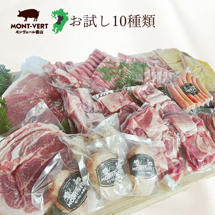 【新発売】熊本県生産直売!モンヴェールポークいろいろ10種類お試しセット♪送料無料 豚肉 しゃぶしゃぶ 小間切れ スペアリブ 焼肉 メンチカツ ハンバーグ 味噌漬け 生ウインナー ポークジャーキー