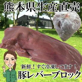 冷凍 熊本県生産直売!新鮮 豚レバーブロック 不定貫 250g〜300g 豚肉 生レバー 国産