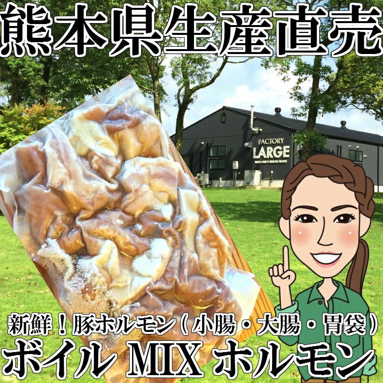 【冷凍】 熊本県生産直売★ボイルミックスホルモン1kg【カット済み】 豚ホルモン 小腸 大腸 胃袋 ガツ あす楽 国産