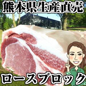 豚肉 ロース ブロック 送料無料 4kg(2kg×2p) ブランド豚 モンヴェールポーク 熊本県産 国産 美味しいお肉 豚ロース ポークステーキ ローストポーク とんかつ ロースカツ 角煮 手作りハ