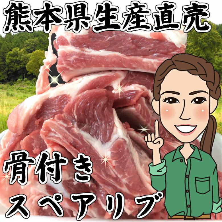熊本県生産直売!骨付きスペアリブ 500g(250g×2) モンヴェールポーク 焼肉 煮込み バーベキュー おまけ付き 国産 豚肉