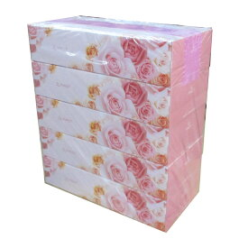 送料無料(北海道沖縄離島除く)ティッシュペーパー ボックスティッシュ ファースト200組 5箱x2パック