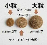 粒の大きさ