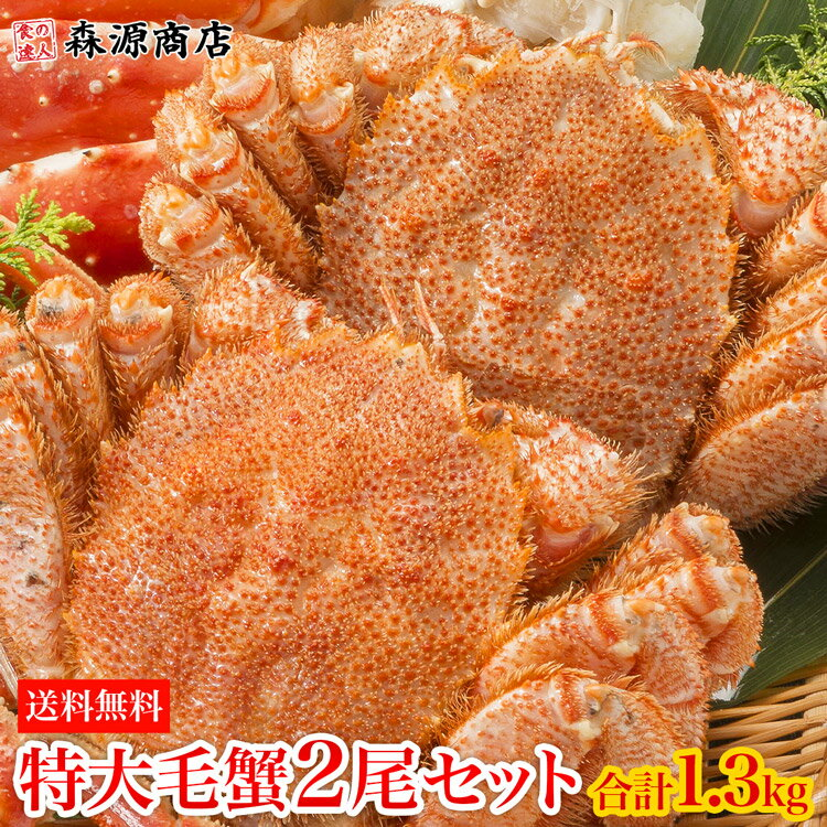 【送料無料】特大毛蟹2尾セット計1.3kg 1尾平均650g《※冷凍便》【 毛ガニ / 毛蟹 / ギフト 】