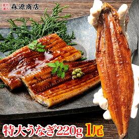 【業務用・ばら売り】特大うなぎ蒲焼1尾220g タレ付き》 鰻 ウナギ 冷凍便 土用丑の日