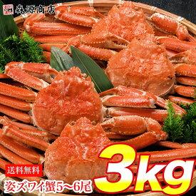 姿ずわいがに 3kg 5〜6尾 蟹 カニ かに ずわいがに ズワイガニ カニミソ かにみそ 蟹味噌 業務用 送料無料 お取り寄せグルメ ギフト