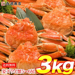 早割 姿ずわいがに 3kg 5〜6尾 蟹 カニ かに ずわいがに ズワイガニ カニミソ かにみそ 蟹味噌 業務用 送料無料 お取り寄せグルメ お歳暮 ギフト