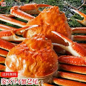 本日Rカードでポイント10倍!( 蟹 かに カニ 訳あり ) カナダ産 ボイル済み 姿ずわい蟹 大サイズ 2尾セット(約1.3kg前後) 冷凍便ギフト 寒中見舞い ズワイガニ ずわい蟹 カニ味噌 かにみそ 蟹