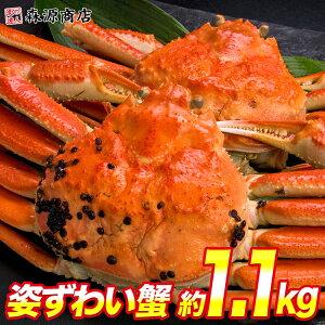 かに 蟹 カニ 高級カナダ産 ボイル済み 姿ずわい蟹2尾セット約1.2kg 送料無料 お取り寄せグルメ ギフト