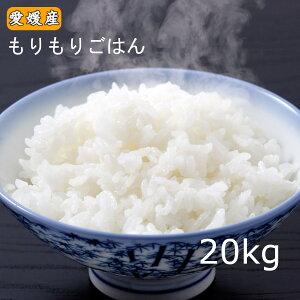 お米 20kg もりもりごはん20kg(10kg×2) 愛媛県産 送料無料 ※北海道・沖縄・東北配送不可