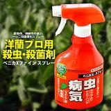 殺虫&殺菌剤ベニカXスプレー虫にも病気にもすばやく効く!長く効く!一つで2役の便利スプレーの最強版