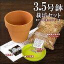 『洋ラン植え替え【中〜大セット】(素焼き鉢3.5号 水苔 肥料 受け皿)』洋ラン資材