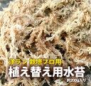 『洋蘭栽培プロ用 水苔』 ミズコケ sphagnum moss 洋ラン資材