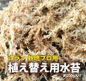 栽培資材『洋ラン 栽培プロ用 水苔』(ミズコケ/ミズゴケ/sphagnum moss)