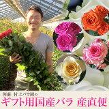 「熊本応援企画阿蘇村上バラ園ギフト用国産バラ産直10本セット」