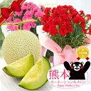 選べるメロン!母の日ギフト フルーツ王国熊本から『国産生花!復興カーネーション&熊本マスクメロン』 母の日プレゼ…