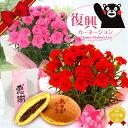 遅れてゴメンね!母の日プレゼント2020 熊本地震からの復興を目指す『国産!生花!復興カーネーション&老舗のどら焼き和菓子セット』 …