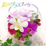 ボトルフラワーアクアお誕生日ギフトにプリザーブドフラワーを超える洋ランの永久生花!