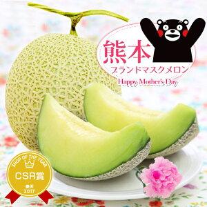 母の日プレゼント2020 選べるメロン!フルーツ王国熊本から『選べる熊本メロン!&カーネーション(造花1輪)セット』 母の日プレゼントに熊本産メロン!甘くておいしい本場の味でお母さん