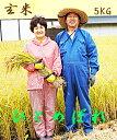 令和元年産 新米 ひとめぼれ 5kg 玄米【送料無料】生産直売 岩手県 ギフト