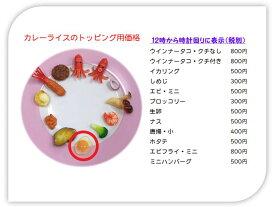 食品サンプル 製作キット&パーツ 生卵