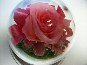 薔薇のプリザーブドフラワーオルゴール(薔薇の色:ライトピンク)