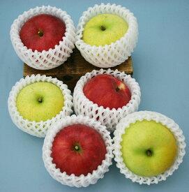 いよいよ収穫開始!!美味しい盛岡りんご!旬のりんご6個