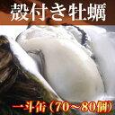 牡蠣 一斗缶【送料無料】殻付き 3年物