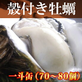 牡蠣 一斗缶【送料無料】殻付き 2年物