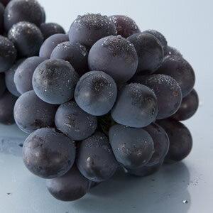 岡山産 ピオーネ 1kg箱(約500g×2房)[フルーツ/果物/ぶどう/葡萄/ブドウ/お中元/岡山]