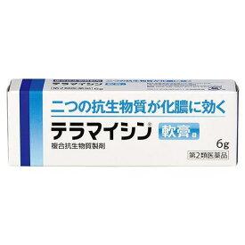 【第2類医薬品】【定形外郵便で送料無料】テラマイシン軟膏 6g