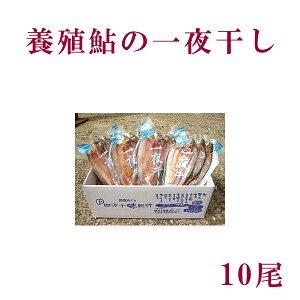 高知県四万十市産 養殖鮎の一夜干し 10尾/冷凍/国産/アユ/あゆ/こうち/干物
