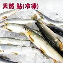 四万十川天然 鮎(冷凍)Lサイズ 5匹セット/1匹約130g〜/個包装