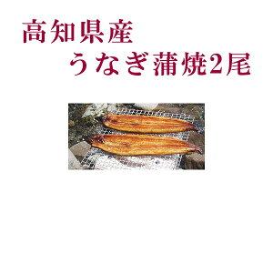 高知県産 うなぎ蒲焼 2尾/四万十/高知/冷凍/国産/無添加/ウナギ/鰻
